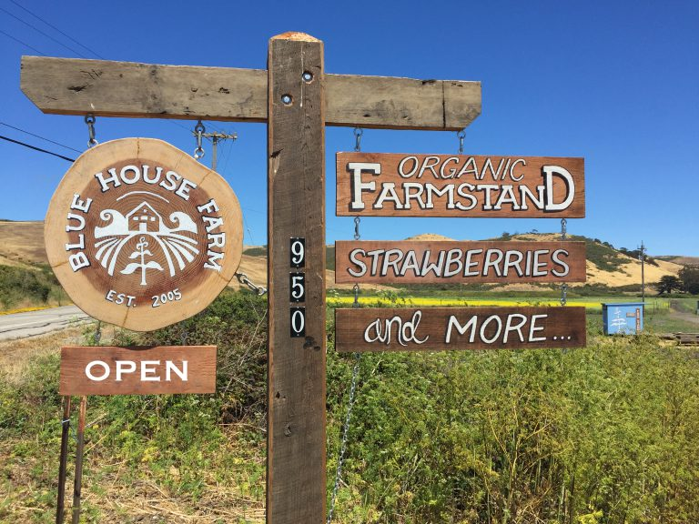 Blue House Farmstand