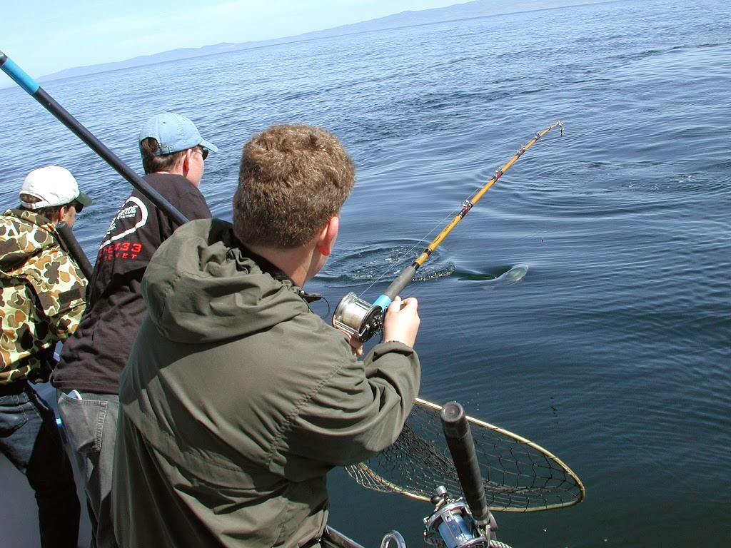Riptide-sportfishing.JPGimgmax1024