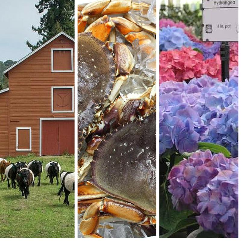Farm + Fish + Flowers
